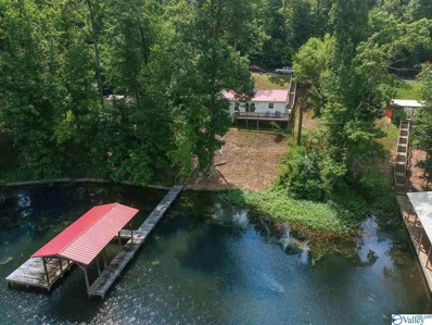 415 Pine Island Point, Scottsboro, AL 35769 - #: 1123497