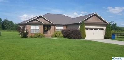 1308 Union Grove Road, Guntersville, AL 35976 - #: 1123727