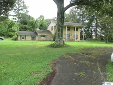 13807 Pulaski Pike, Ardmore, AL 35739 - #: 1123735