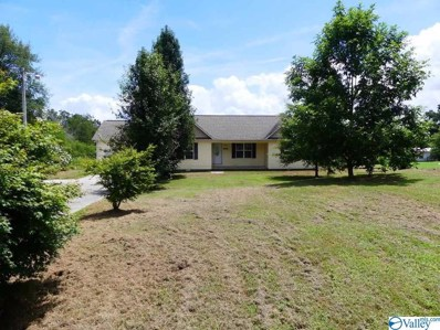 167 Prospect Road, Scottsboro, AL 35769 - #: 1123740