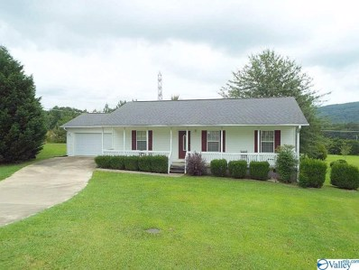 309 Hope Drive, Fort Payne, AL 35967 - #: 1123860