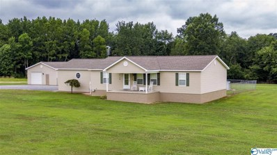 379 Bellview Road, Henagar, AL 35978 - #: 1124039