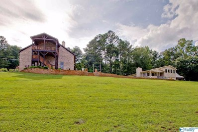 1125 Honeycomb Road, Grant, AL 35747 - #: 1124136