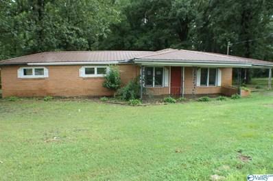 56 Morris Road, Danville, AL 35619 - #: 1124321