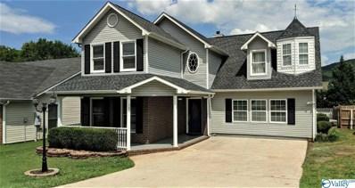 243 Shadowbrook Lane, Huntsville, AL 35811 - #: 1124747