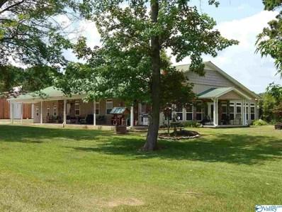 51 Norberg Road, Guntersville, AL 35976 - MLS#: 1124797