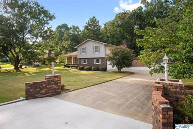 809 Meadowbrook Drive, Scottsboro, AL 35768 - #: 1125017