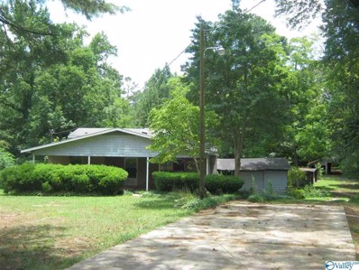 3890 Leeth Gap Road, Boaz, AL 35956 - #: 1125204