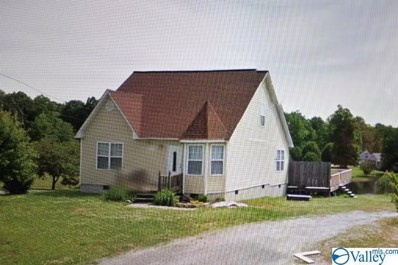 1144 County Road 788, Ider, AL 35981 - #: 1125330