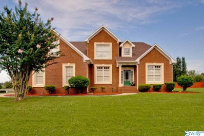 100 Cashions Court, Hazel Green, AL 35750 - #: 1125364