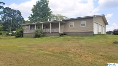 1400 Croft Ferry Road, Hokes Bluff, AL 35903 - MLS#: 1125373