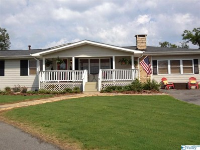466 Warrenton Shores Drive, Guntersville, AL 35976 - MLS#: 1125401