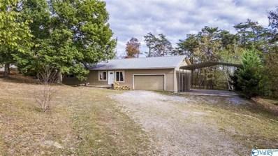 9840 County Road 103, Mentone, AL 35984 - #: 1125546