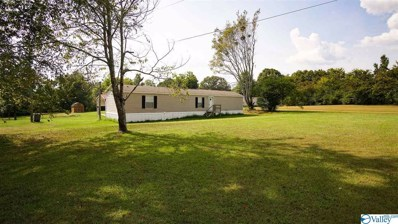 1015 County Road 294, Hillsboro, AL 35643 - MLS#: 1126460