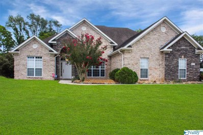 24973 Mahalo Circle, Madison, AL 35756 - #: 1126534