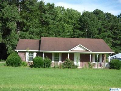193 Hambrick Drive, Horton, AL 35980 - #: 1126793