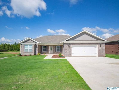 110 Compass Hill Circle, Toney, AL 35773 - #: 1127043