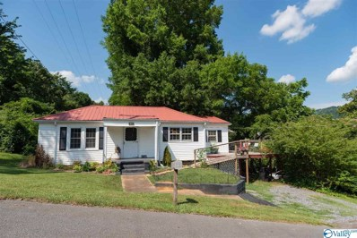 403 7TH Street, Fort Payne, AL 35967 - #: 1127072