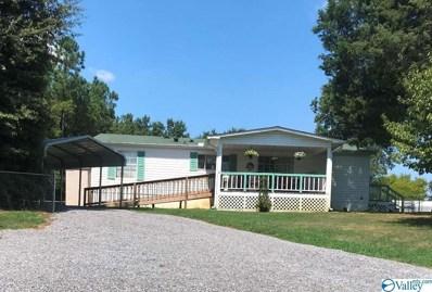 411 County Road 351, Leesburg, AL 35983 - MLS#: 1127458