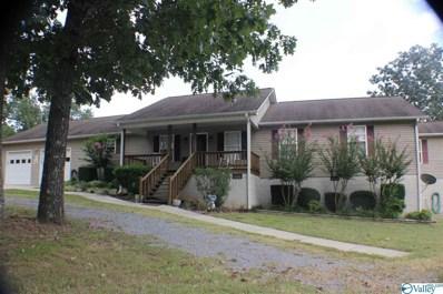 1648 County Road 57, Collinsville, AL 35961 - #: 1128044
