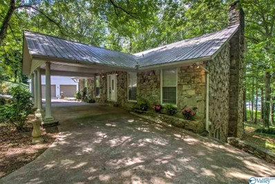 906 Holiday Shores Road, Scottsboro, AL 35769 - #: 1128279