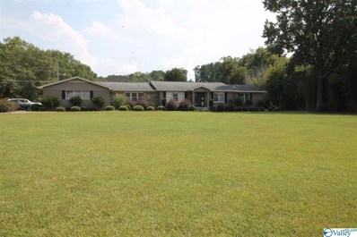 4206 Rainbow Drive, Rainbow City, AL 35906 - MLS#: 1128291
