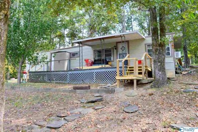 1045 County Road 251, Cedar Bluff, AL 35959 - #: 1128989