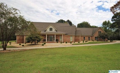 3924 San Souci Cave Road, Decatur, AL 35603 - MLS#: 1129021