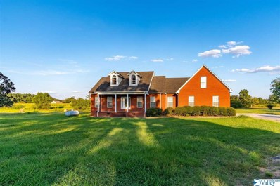 675 Brown Road, Danville, AL 35619 - #: 1129374