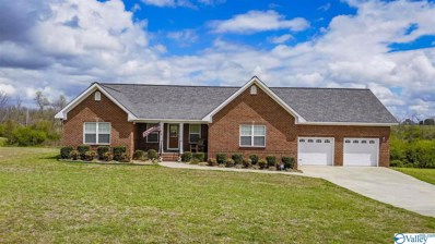 49 Creekview Drive, Rainsville, AL 35986 - MLS#: 1129405