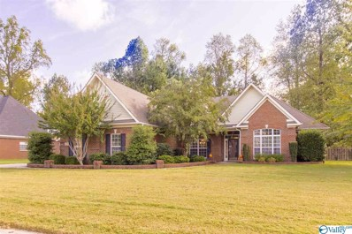 205 Burwell Ridge Trail, Harvest, AL 35749 - MLS#: 1129543