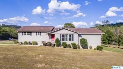 1968 County Road 85, Valley Head, AL 35989 - MLS#: 1129906
