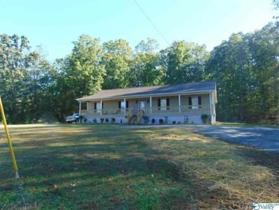 2307 Rescue Road, Union Grove, AL 35175 - #: 1130767