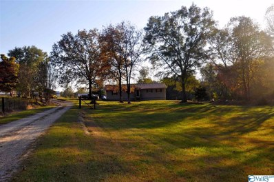 683 County Road 198, Crane Hill, AL 35053 - MLS#: 1131913