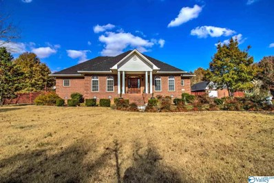 335 Shady Grove Road, Toney, AL 35773 - MLS#: 1132488