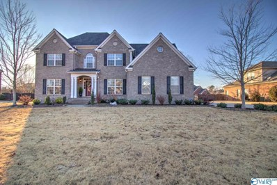 206 Burwell Ridge Trail, Harvest, AL 35749 - MLS#: 1132680