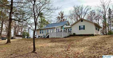 167 County Road 602, Cedar Bluff, AL 35959 - MLS#: 1133014