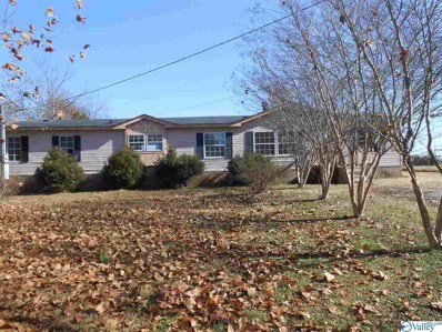 247 Caroline Road, Toney, AL 35773 - MLS#: 1133068