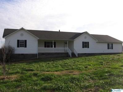715 Brothers Road, Albertville, AL 35951 - #: 1133246