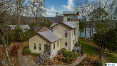 260 Shady Lane E, Scottsboro, AL 35769 - #: 1134084