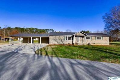 2420 Cowen Circle, Guntersville, AL 35976 - #: 1134287