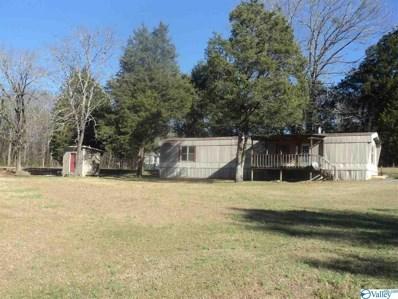 805 County Road 106, Leesburg, AL 35983 - MLS#: 1134291