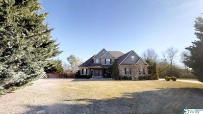 541 Kitchens Drive, Arab, AL 35016 - #: 1134306