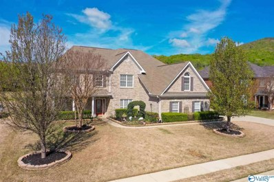 3112 Rocky Meadows Road, Hampton Cove, AL 35763 - MLS#: 1134391