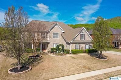 3112 Rocky Meadows Road, Hampton Cove, AL 35763 - MLS#: 1134391