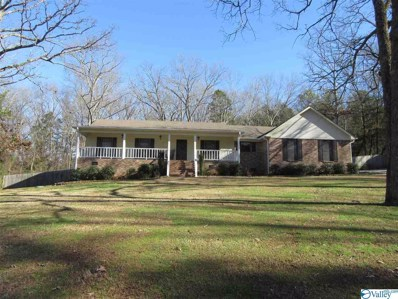 4300 Indian Hills Road, Decatur, AL 35603 - MLS#: 1134527