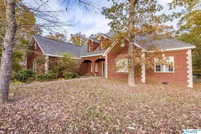 744 County Road 647, Mentone, AL 35984 - MLS#: 1135009