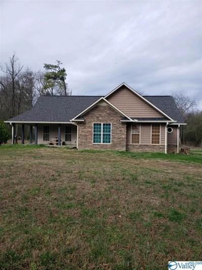 1381 Bethel Church Road, Guntersville, AL 35976 - #: 1135225
