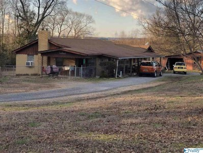 665 County Road 166, Sand Rock, AL 35983 - #: 1135946
