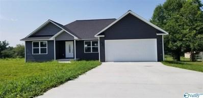 250 Shiloh Ranch Road, Rainsville, AL 35986 - #: 1136257